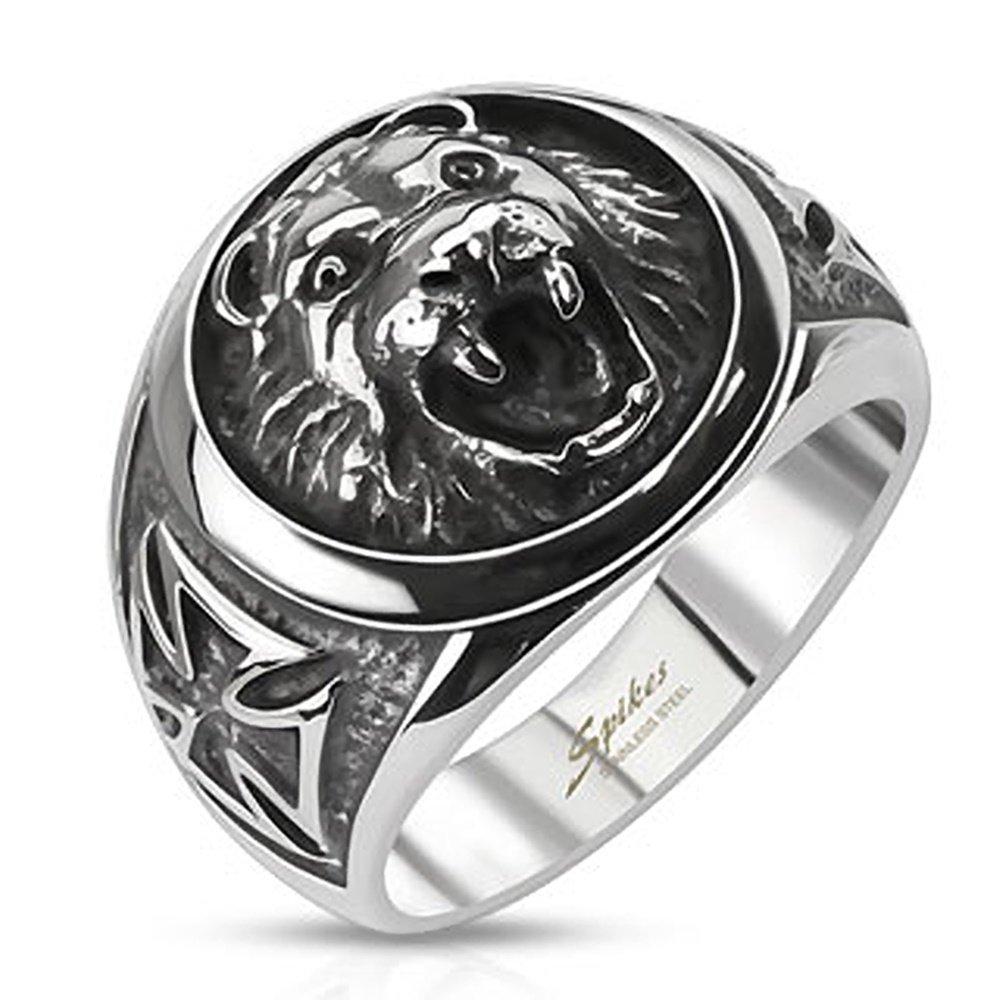 soñar con leones y con anillos de leones